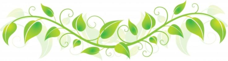 Free Vine Cliparts, Download Free Clip Art, Free Clip Art on.