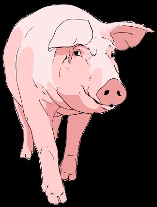 File:Pig clipart 01.svg.