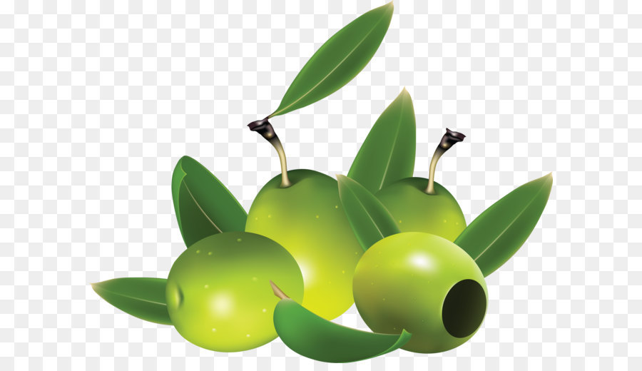 Clipart olive 3 » Clipart Station.