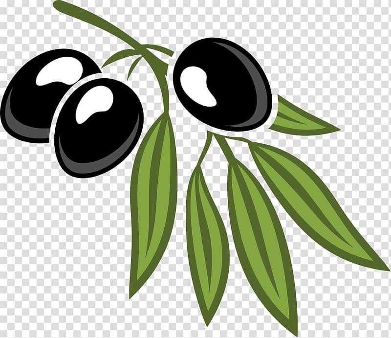Olive leaf Cartoon , Black olives and foliage transparent.