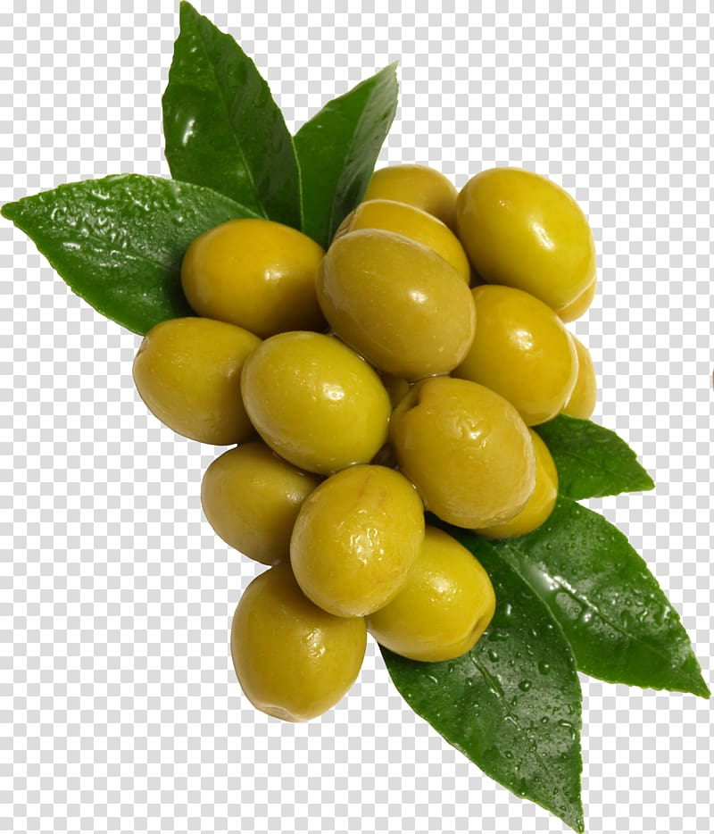 Green olive, Olive Fruit, Green olives transparent.