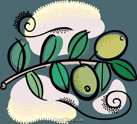 Olivenzweig mit Oliven Vektor Clipart Bild.