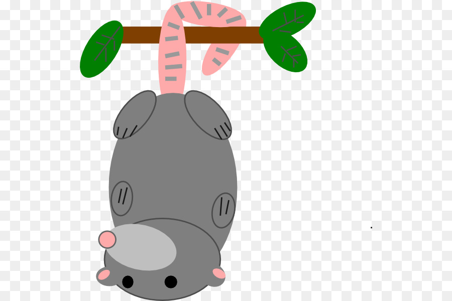 Opossum Snout png download.