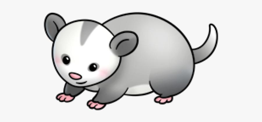 Possum Clipart.