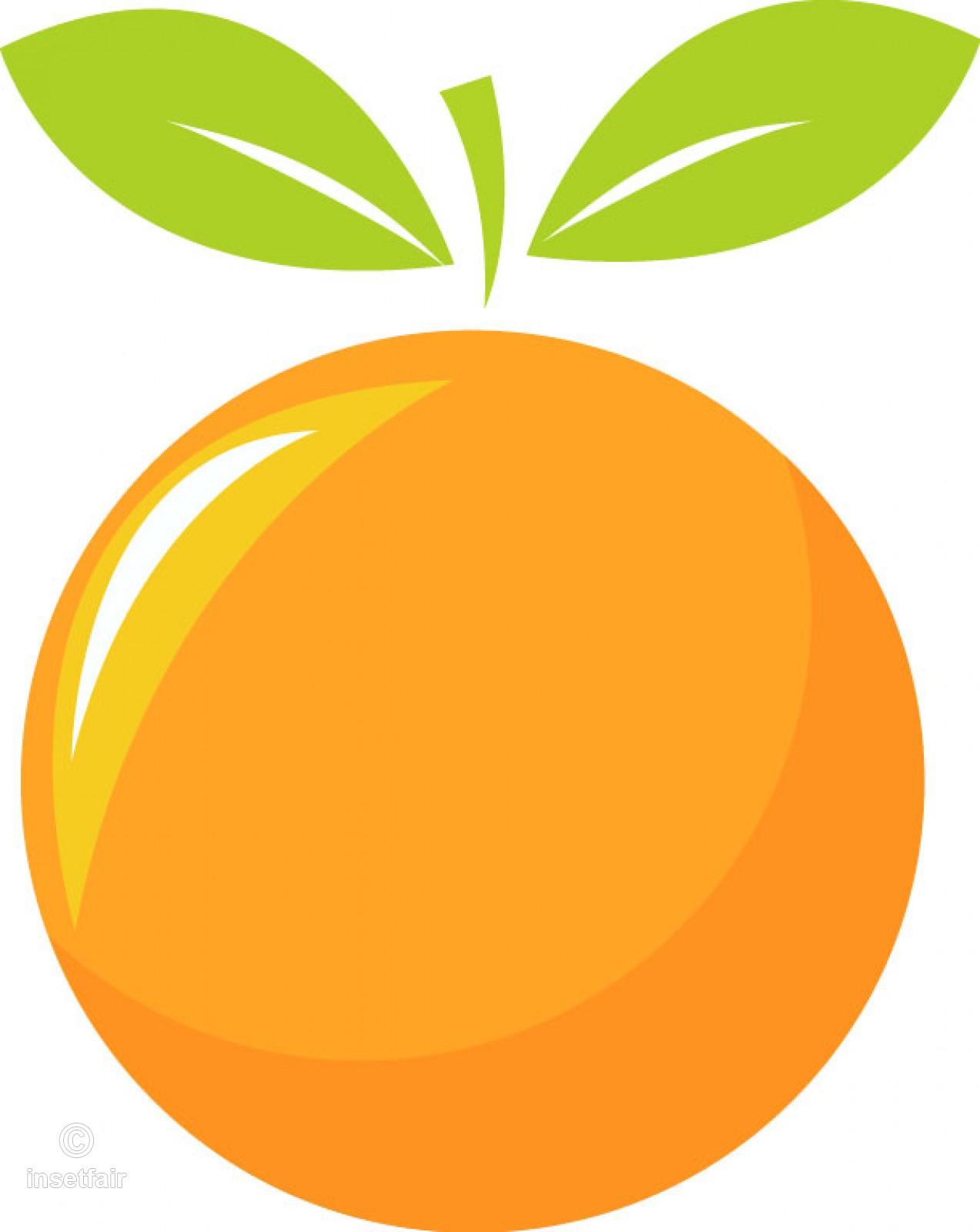 Orange fruit vector illustration clipart image.