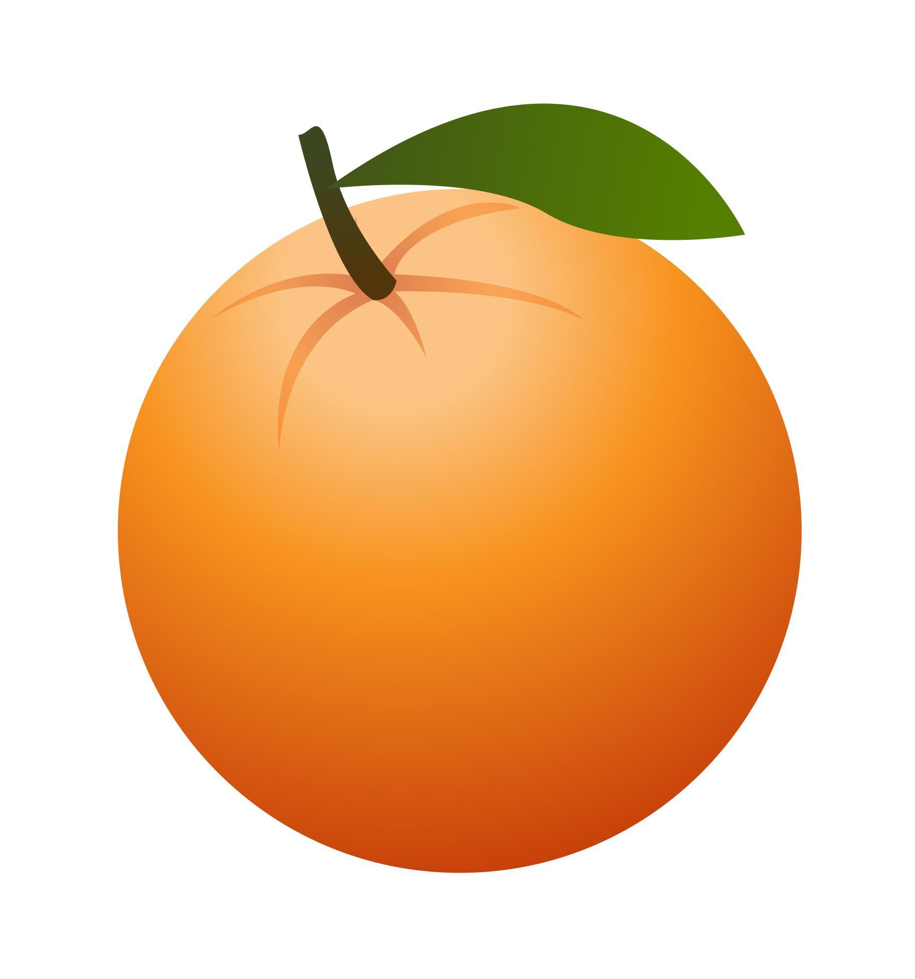 Hd art orange clipart fruit drawing jpg.