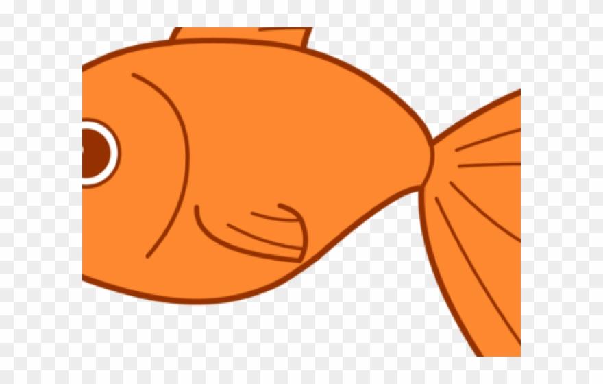 Gold Fish Clipart School Snack.