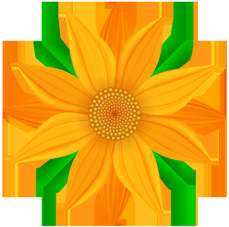 Orange Flower Transparent PNG Clip Art Image.