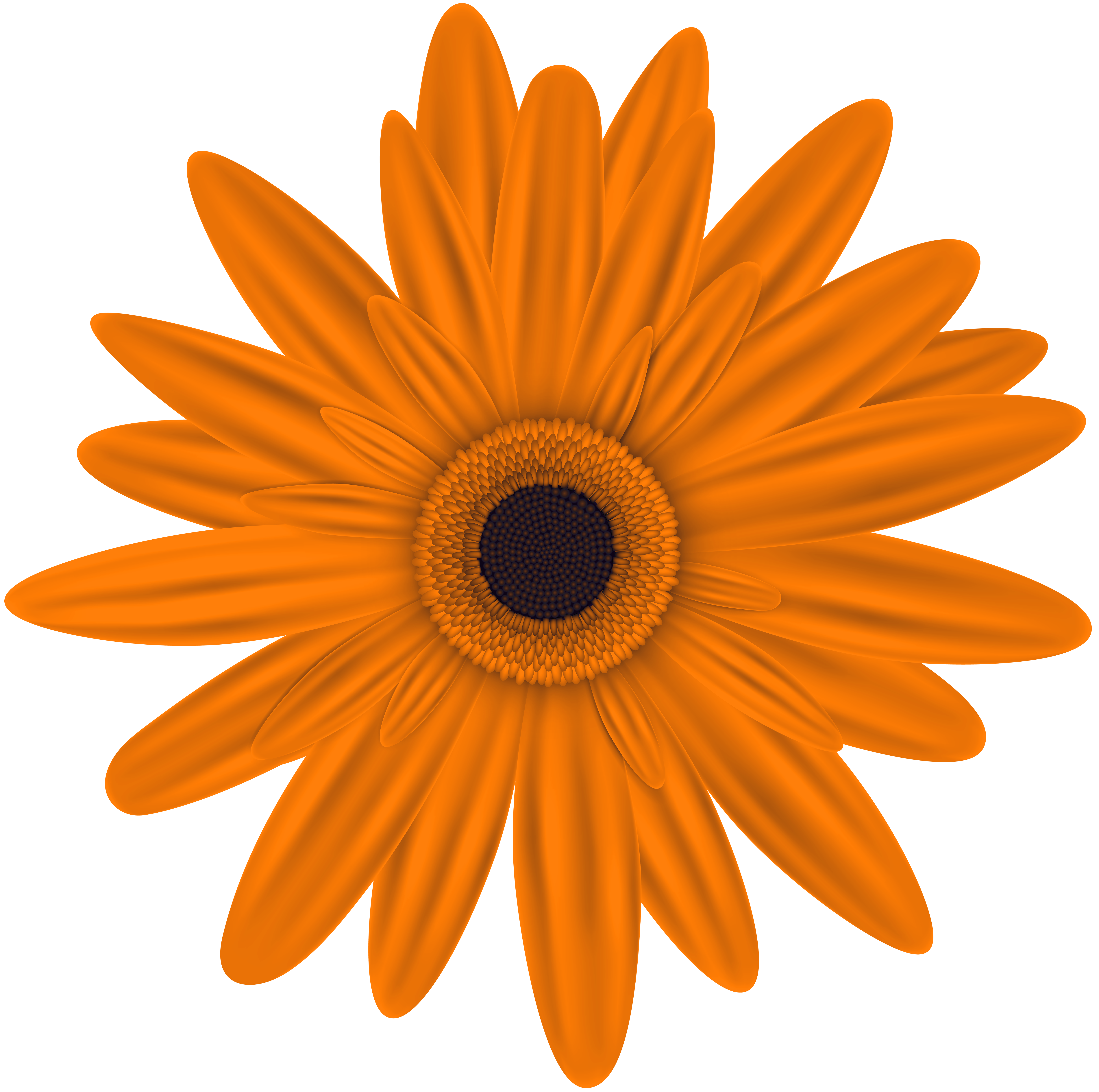 Orange Flower Clip Art PNG Image.