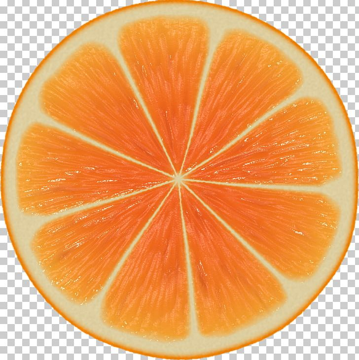 Orange Slice Mathematics Symmetry Patterns In Nature PNG.