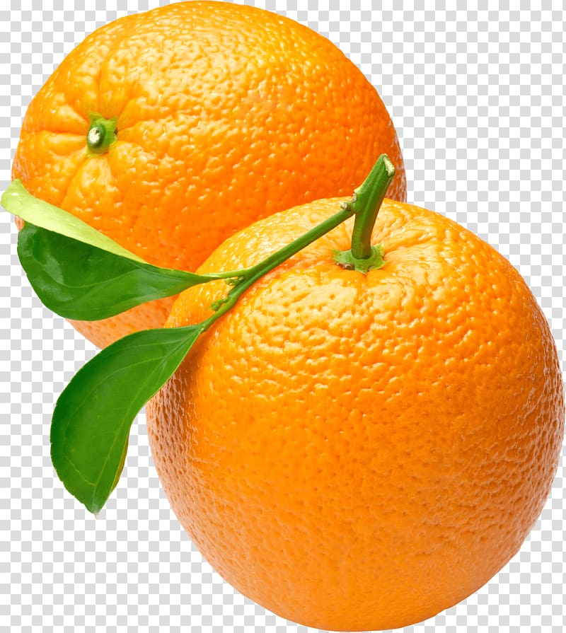 Two round oranges, Two Oranges transparent background PNG.