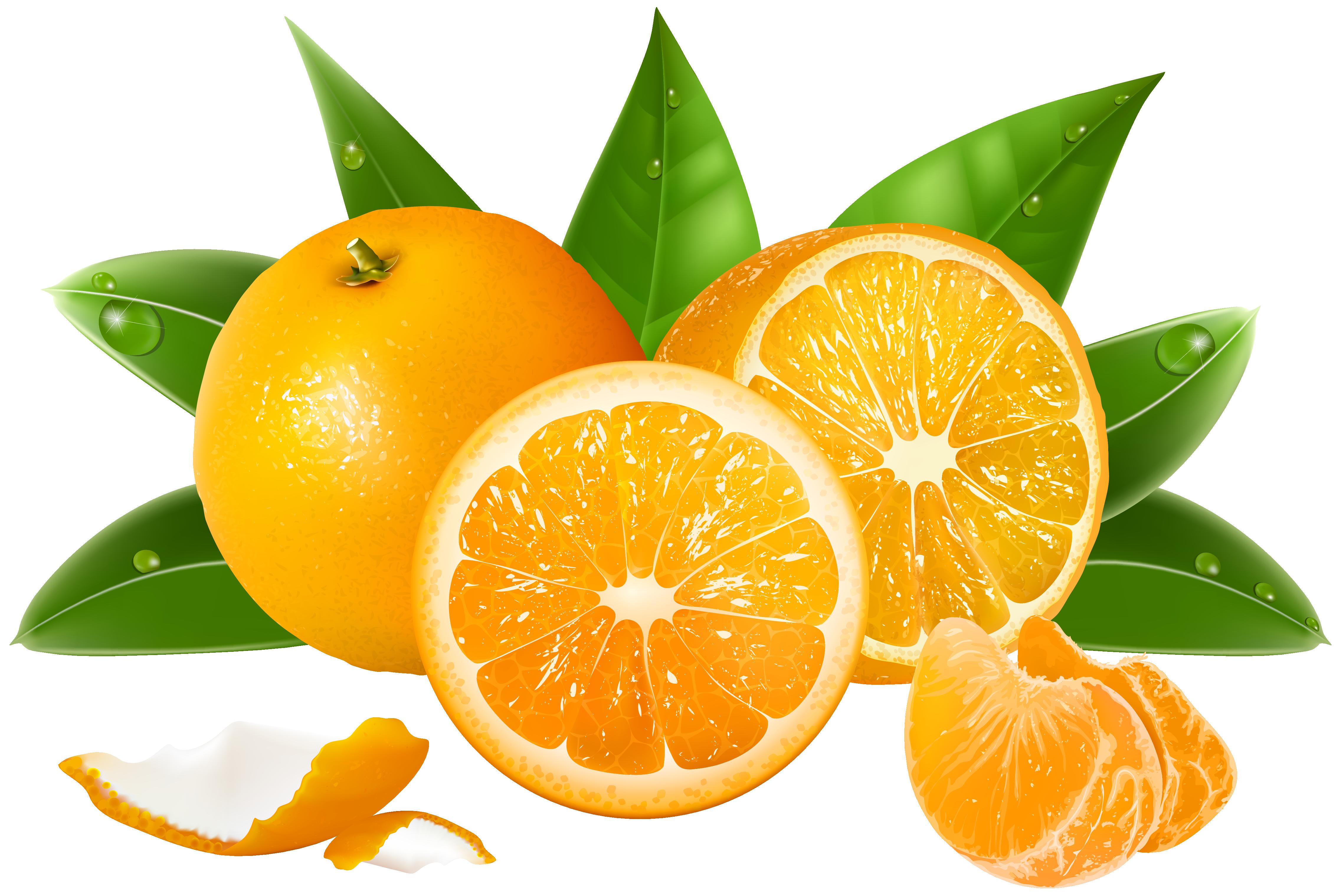 Oranges PNG Clipart Image.