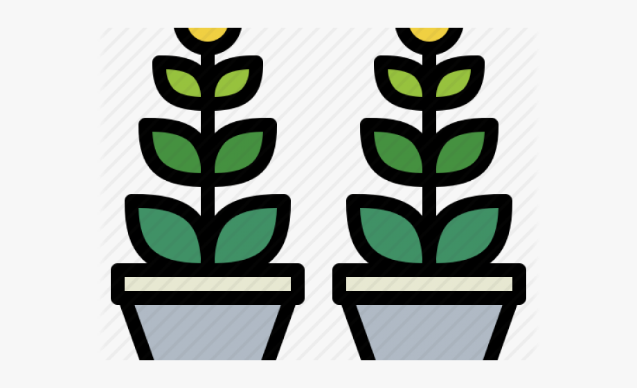 Potted Plants Clipart Ornamental Plant.