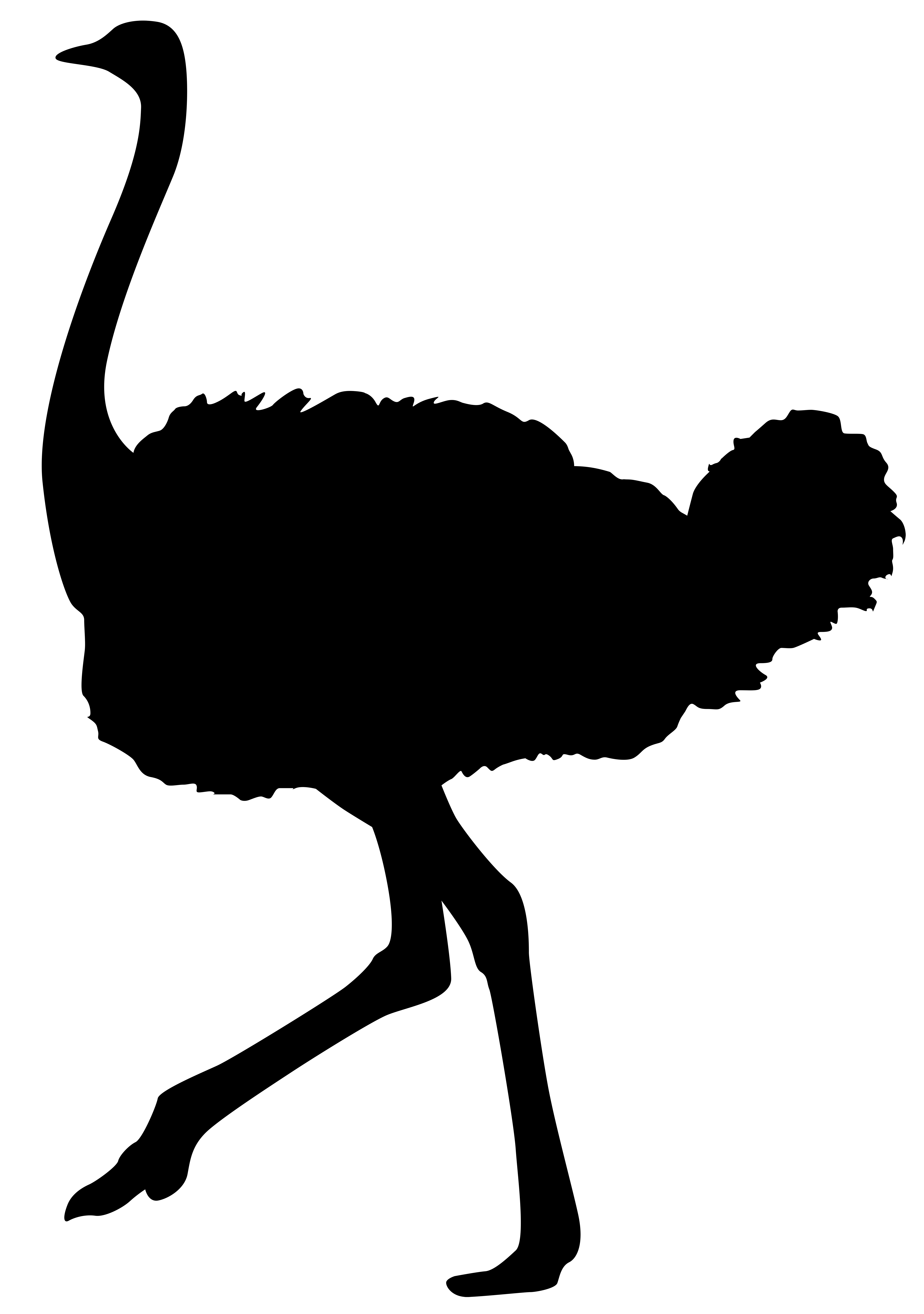 Ostrich Silhouette PNG Transparent Clip Art Image.