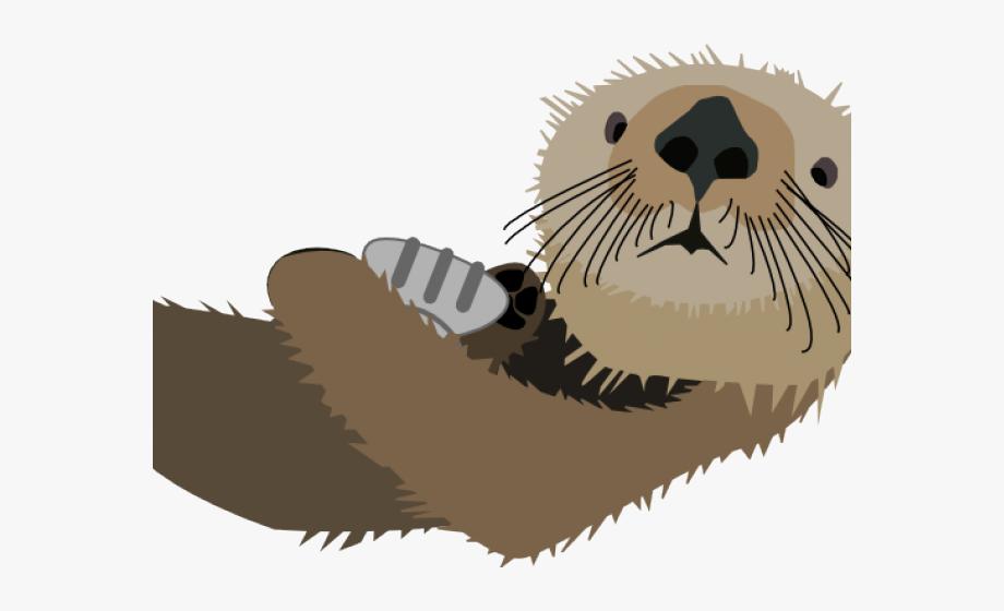 Sea Otter Clipart White Background.