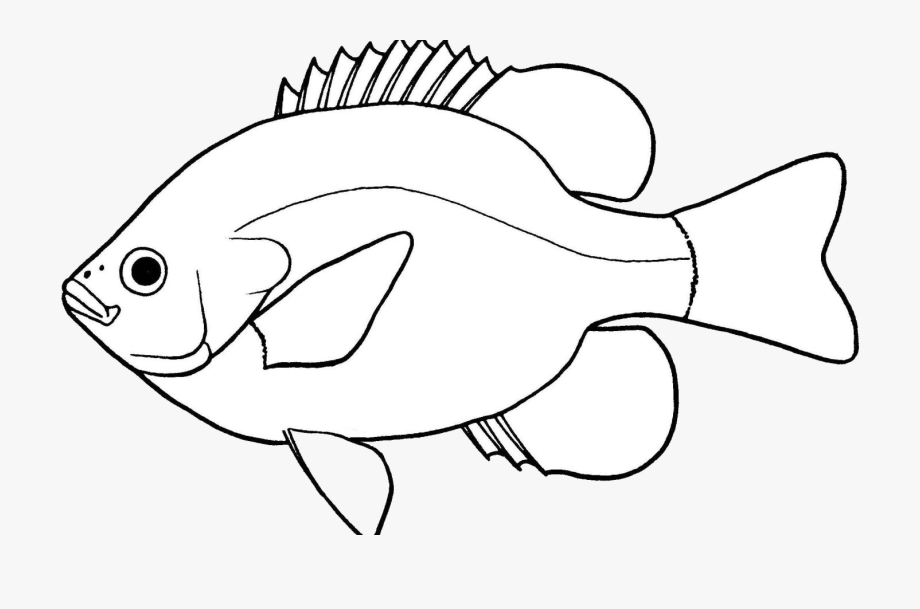 Fish Lovely Of Clipart Black And White Letter Master.