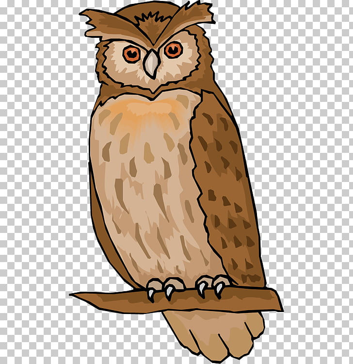 Owl Free content , Hoot s PNG clipart.