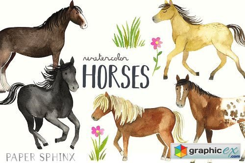 Watercolor Horses Clipart Pack » Free Download Vector Stock.