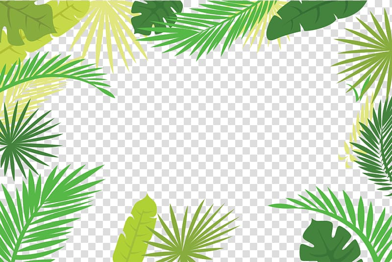 Arecaceae Text Branch Leaf Illustration, Palm leaf border, green.