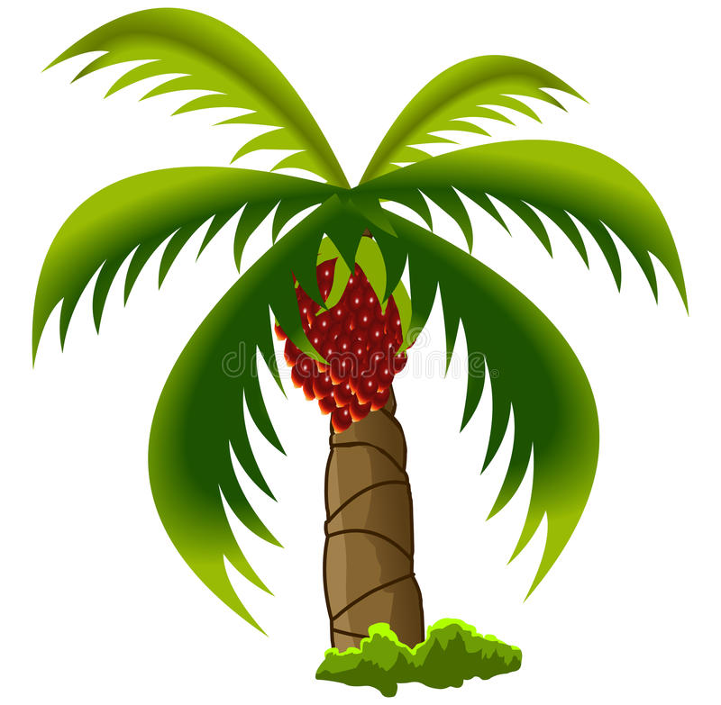 6352 Palm free clipart.