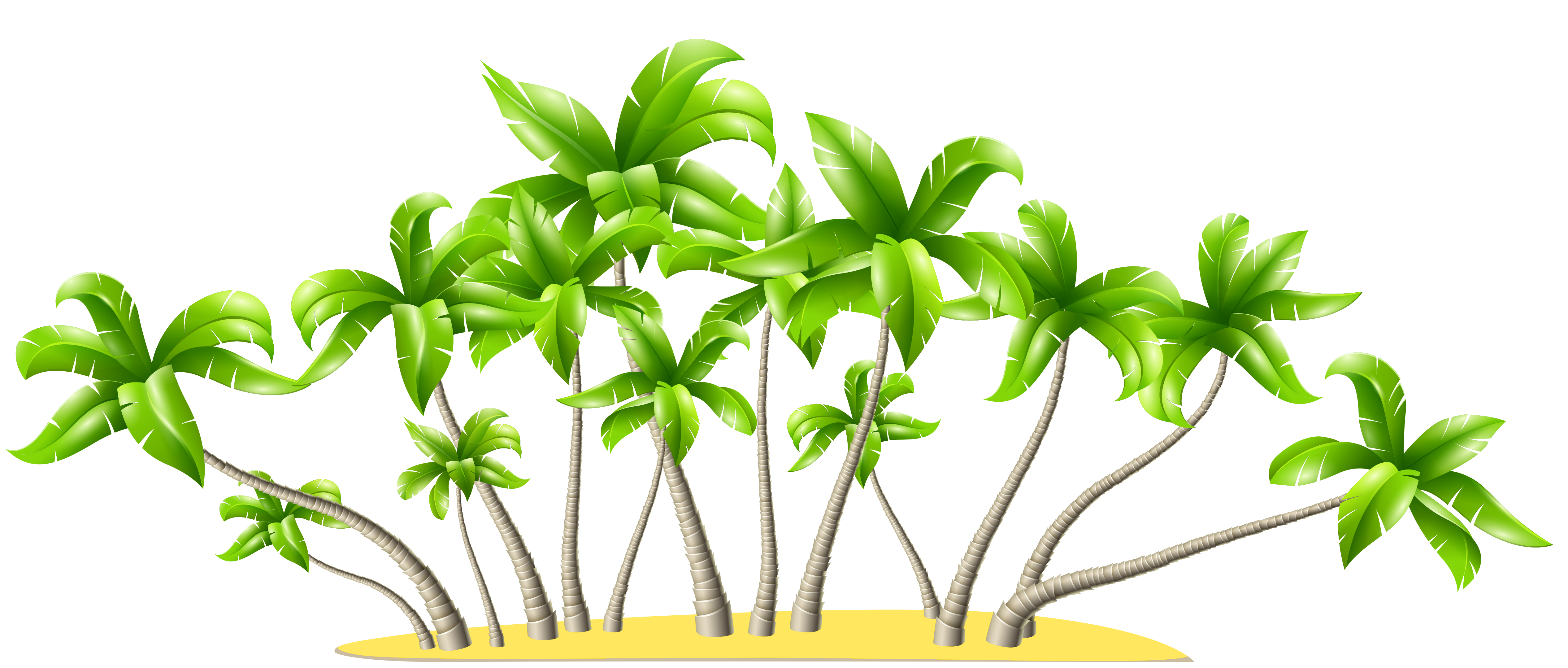 Showing post & media for Cartoon palm tree border.
