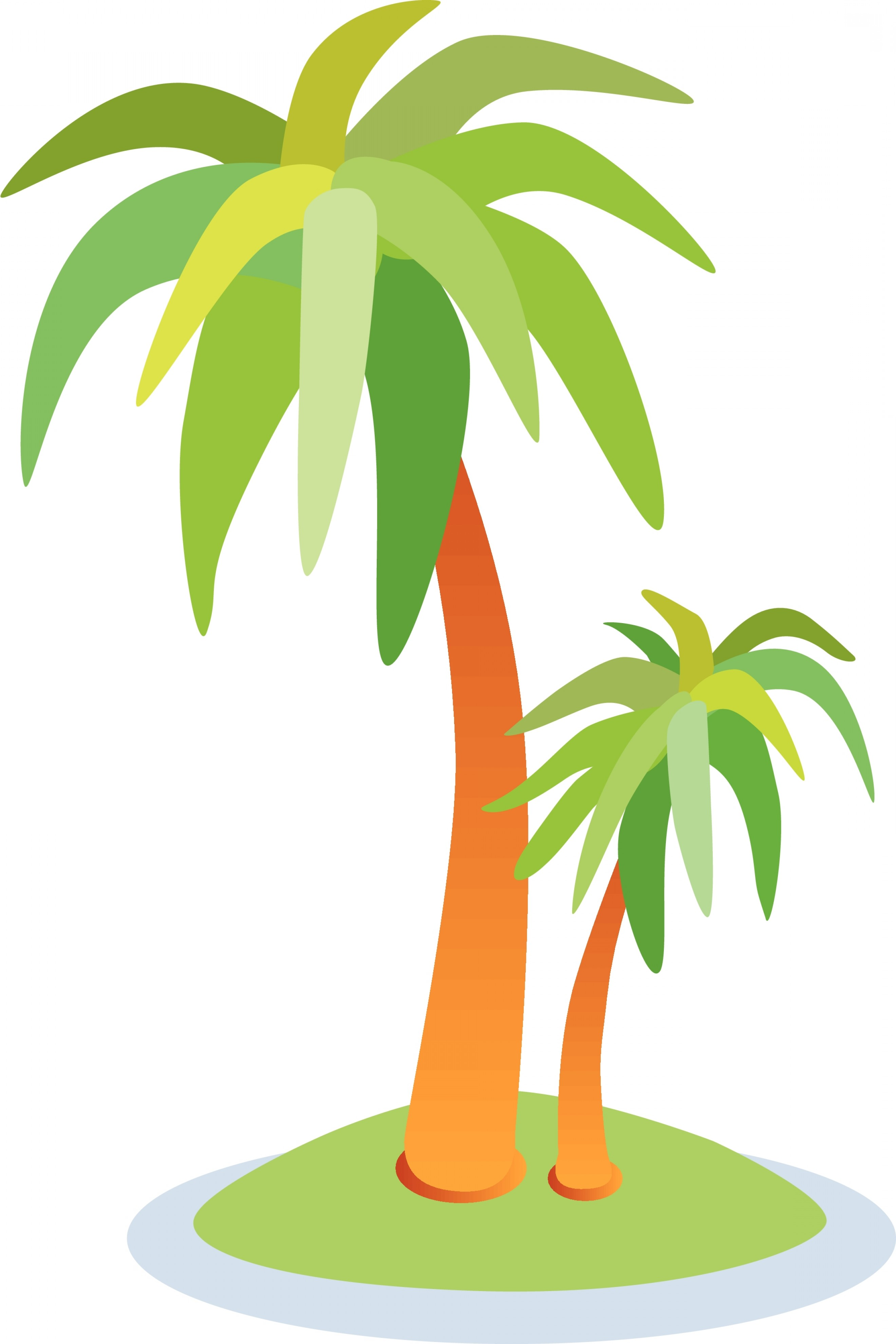 Palm Tree Borders Design.