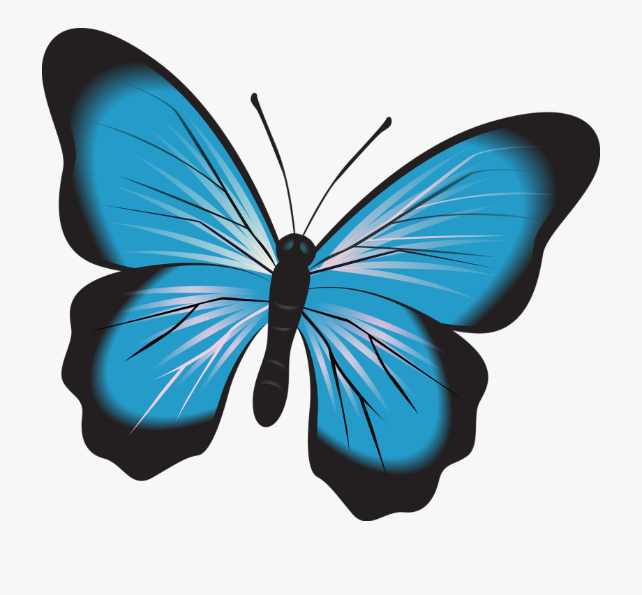 Butterfly Blue Clip Art Free Picture.