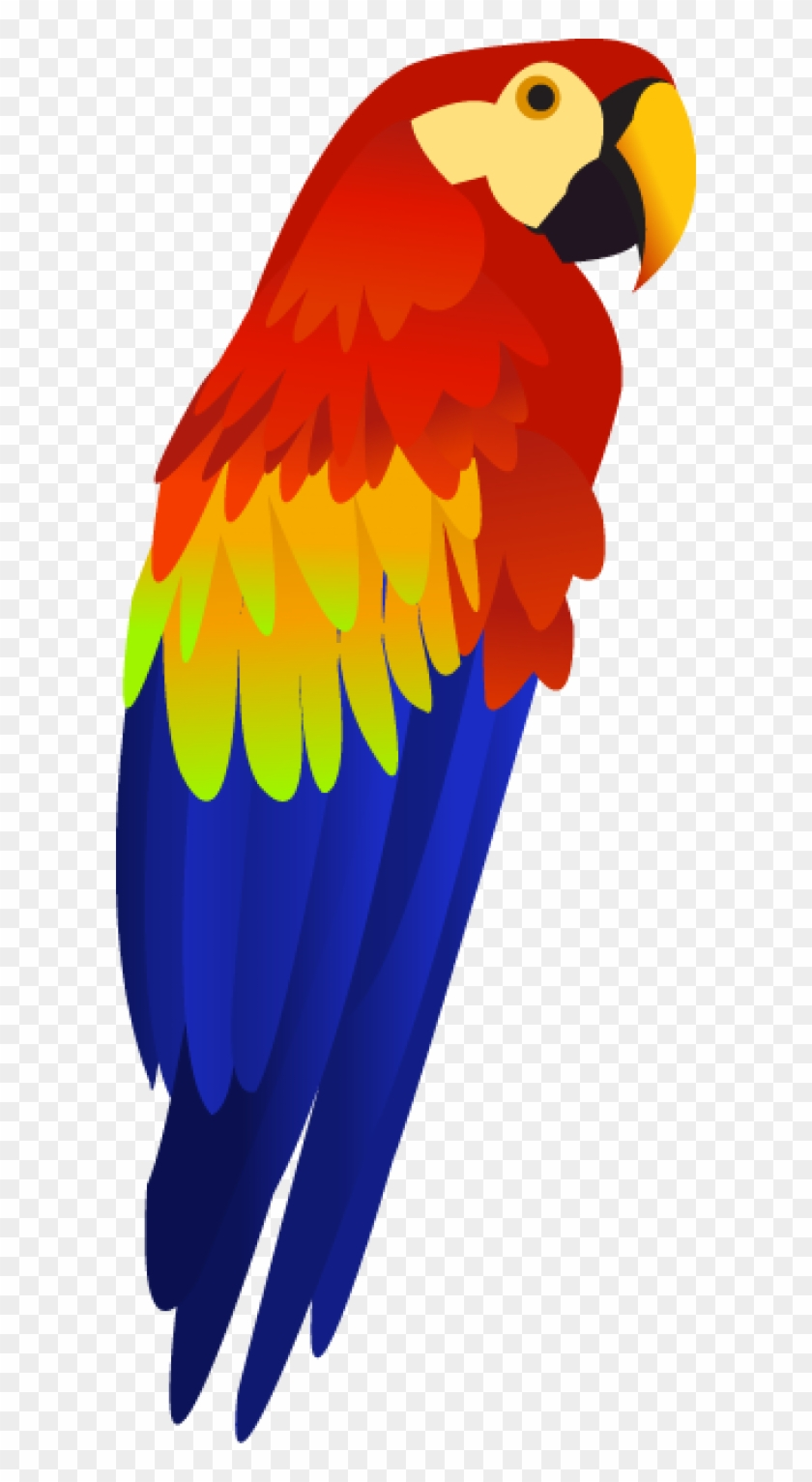 Parrot Png Free Download.