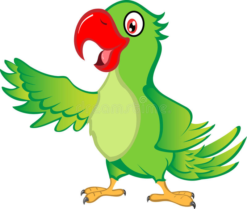 Parrot Stock Illustrations.