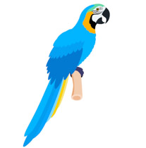 Search Results for parrot clipart.