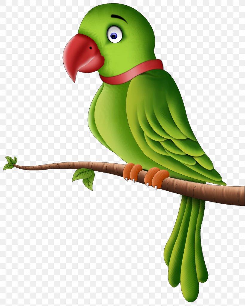 Parrot Bird Clip Art, PNG, 1280x1600px, Parrot, Beak, Bird.