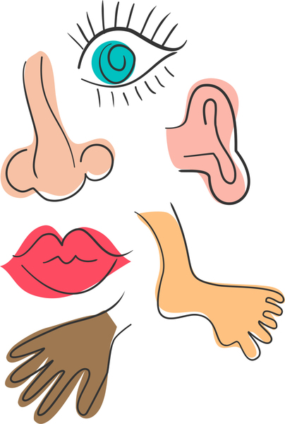 Part of body clipart 5 » Clipart Station.