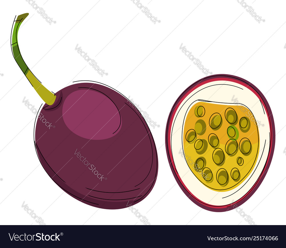 Clipart passion fruit or color.