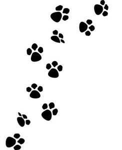Dog Prints Paw Bones Microsoft Clipart.