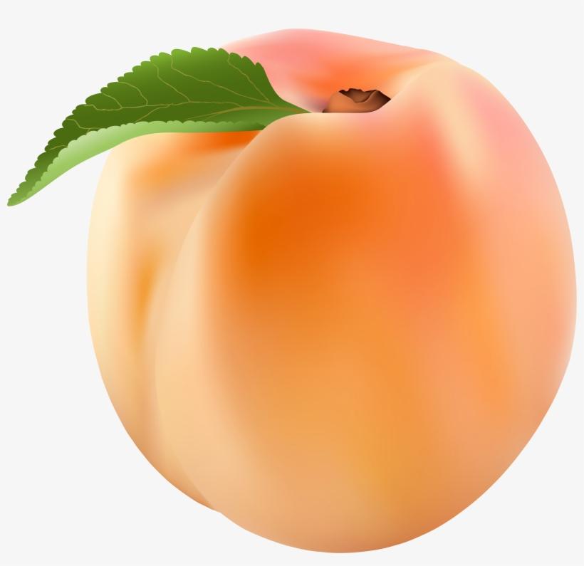 Peach Png Clip Art Image.