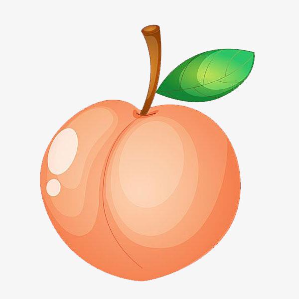 Peach fruit clipart 2 » Clipart Station.