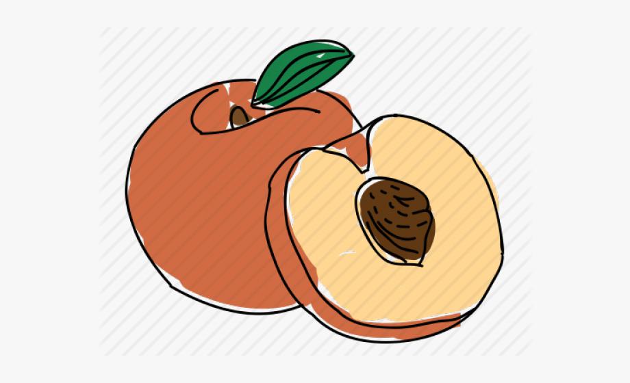 Peach Pit Clipart #126672.