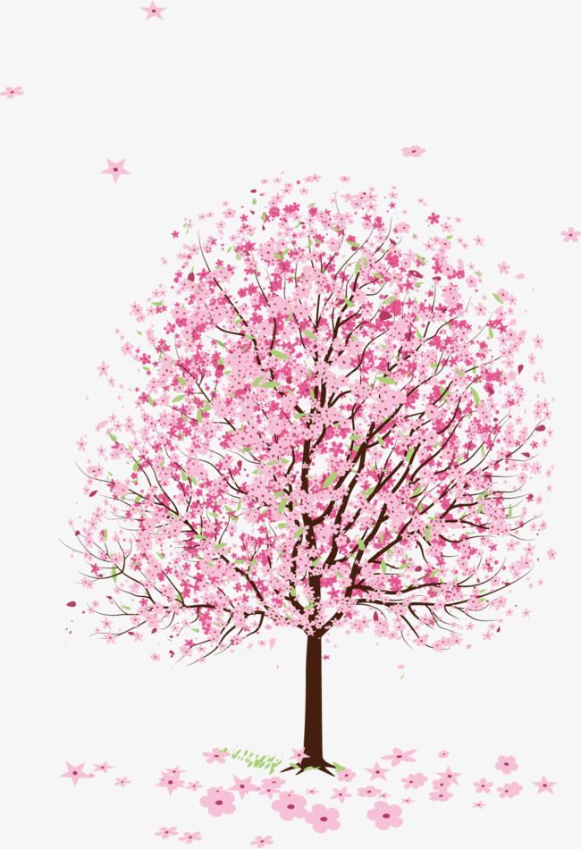 Pink Peach Blossom Peach Tree, Peach Clipart, Tree Clipart, Pink PNG.