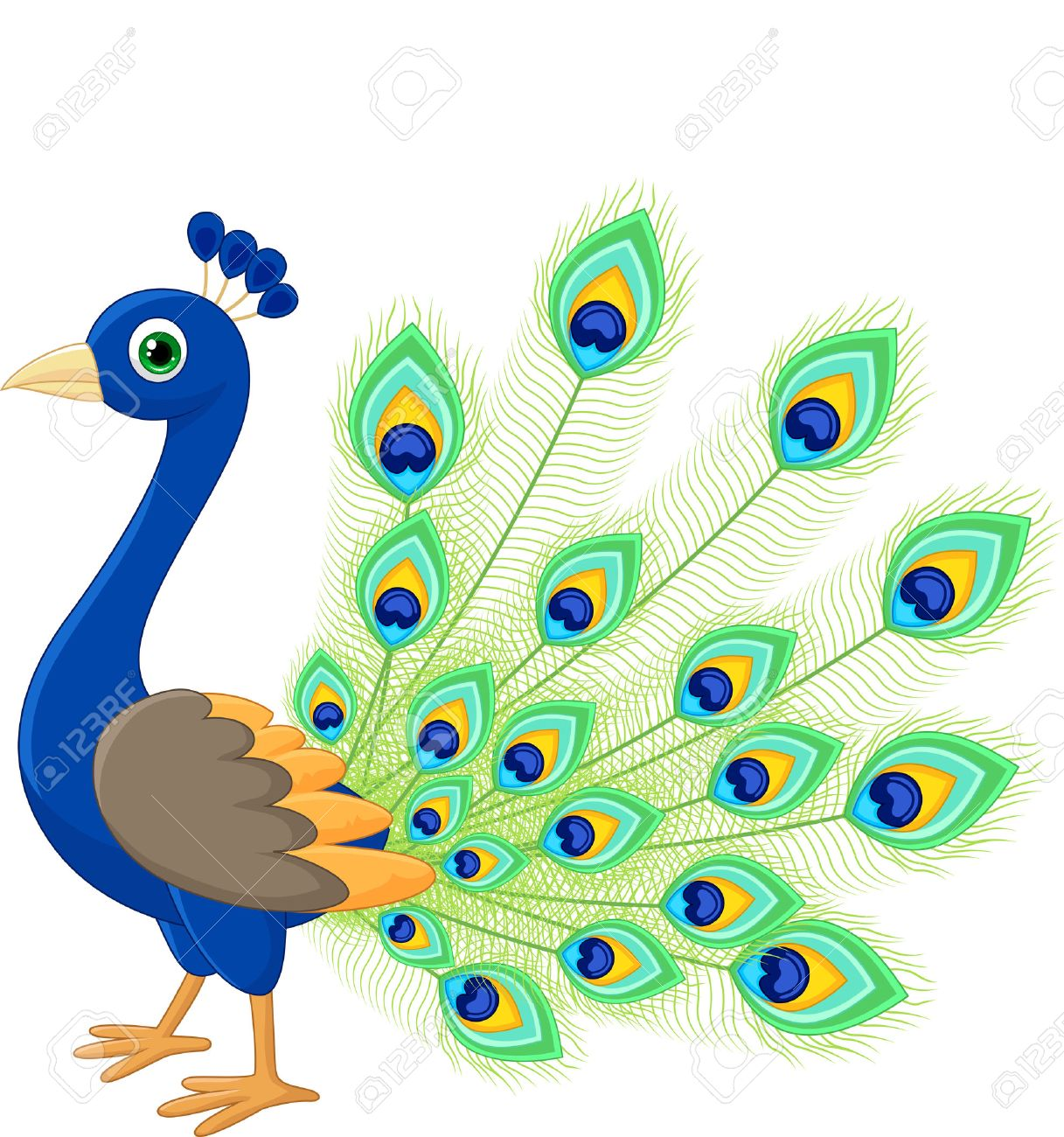 Peacock cartoon.