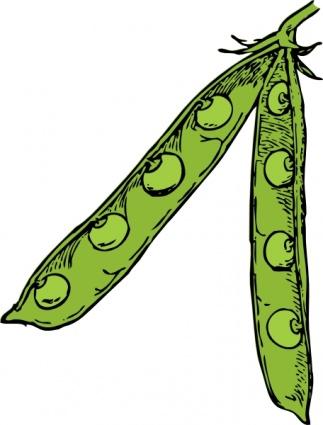 Pea Pod clip art clip arts, free clip art.