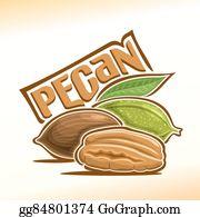 Pecan Clip Art.