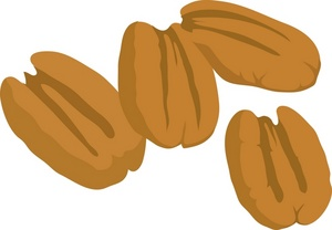 Free Pecan Cliparts, Download Free Clip Art, Free Clip Art.
