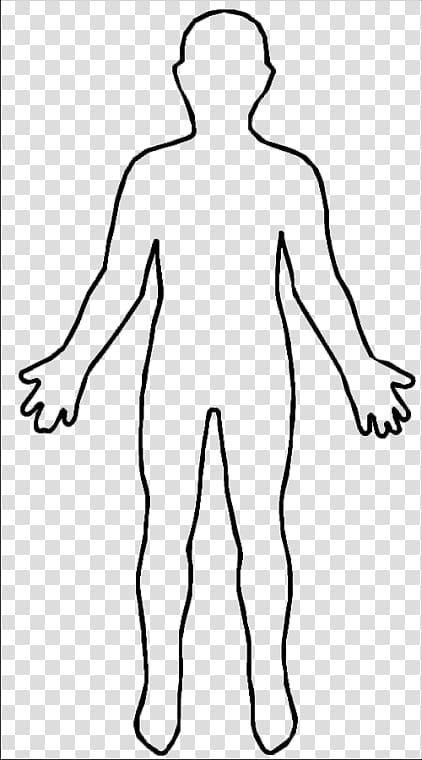 Human illustration, Outline Person Homo sapiens , Female.