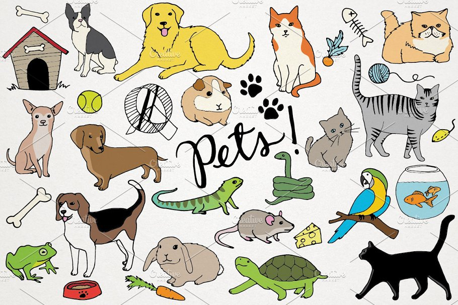 Animals & Pets Illustrations.