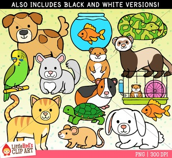 Pet Animals Clip Art.