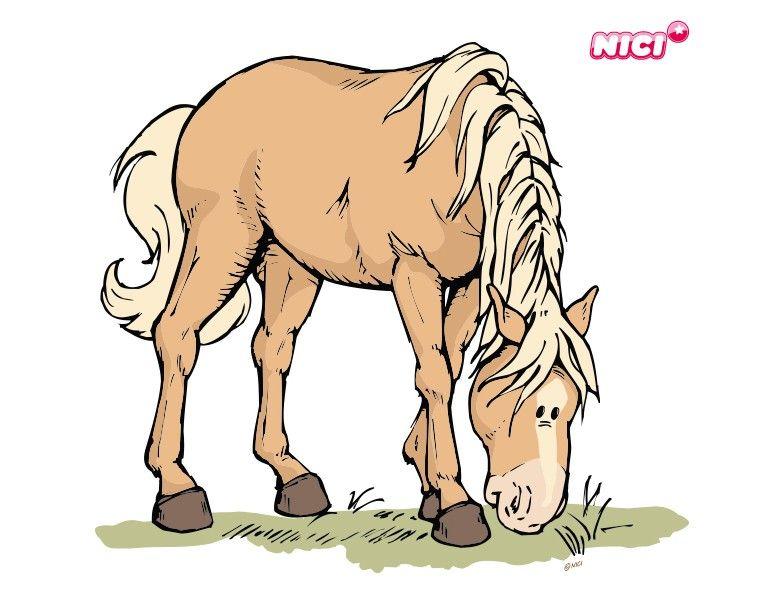 Wandtattoo Horse Club.
