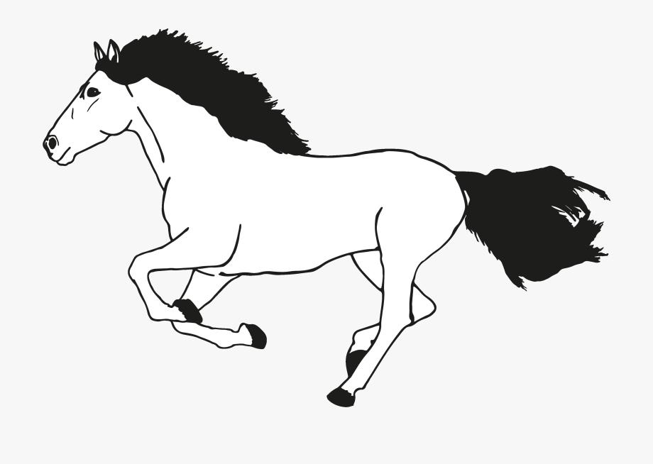 Clipart Pferd Schwarz Wei C3 9f Comic Bilder Kostenlos.