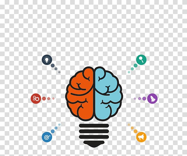 Lateralization of brain function Concept, management.