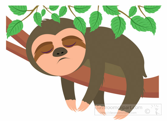 Mammal clipart sloth sleeping on tree clipart 6.