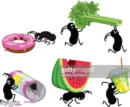 Picnic Ants Running Away With Picnic Food (vector) premium.